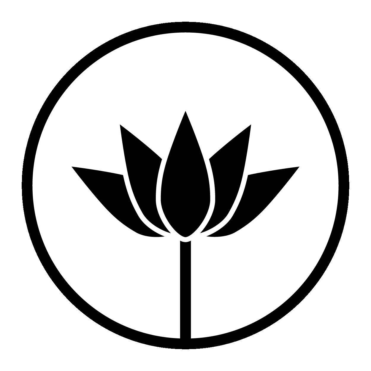 logo34MTF-14.png