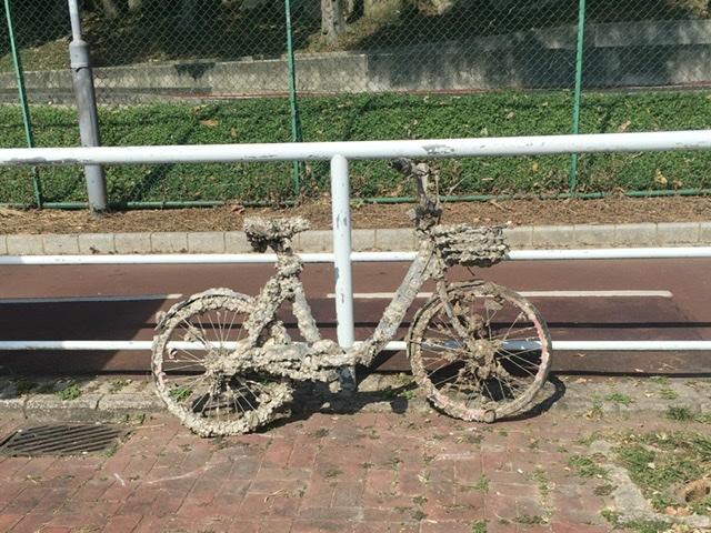 Re_cycle.jpg