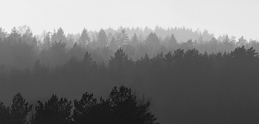 512px-Forested_hills_in_Lysekil_in_fog_-_B%26W.jpg